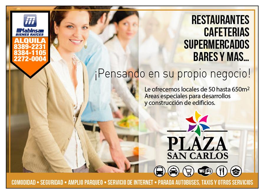 PSC-Servicios2