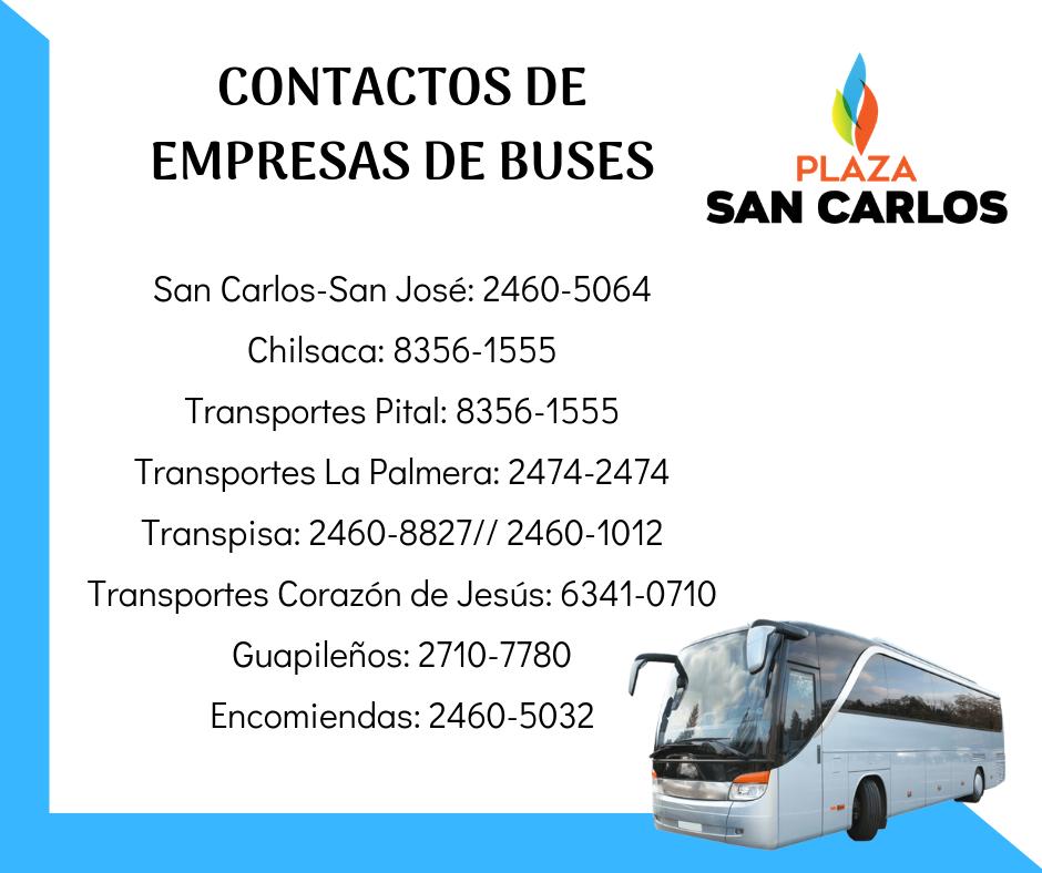 Contactos-buses